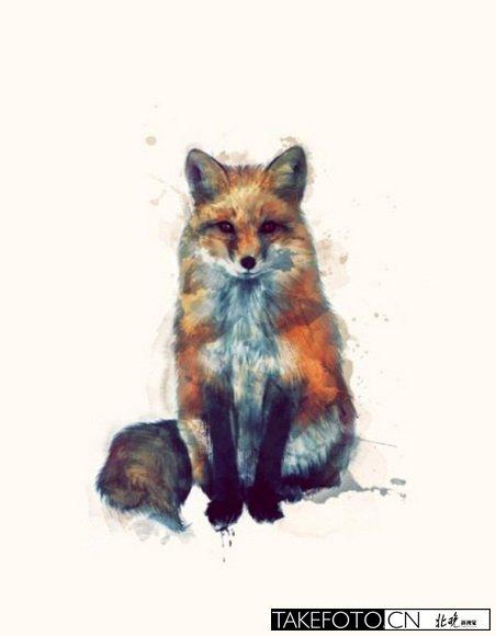于动物的手绘插画