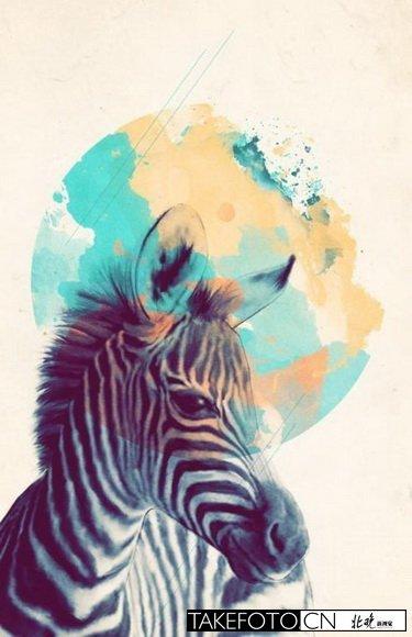 加拿大艺术家amy hamilton的一组关于动物的手绘插画