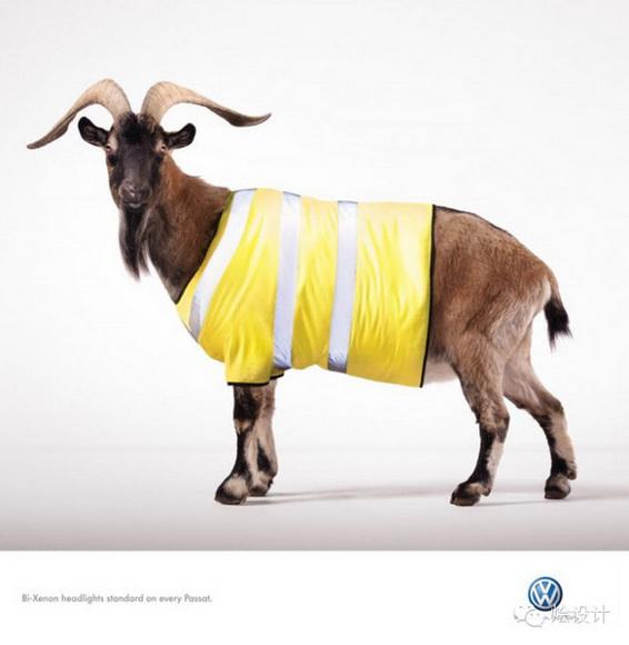 广告设计中充满趣味的鲜活动物形象