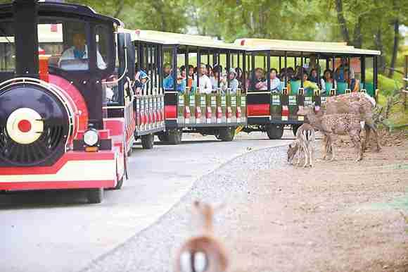 北京野生动物园开放全国最大自驾散养区
