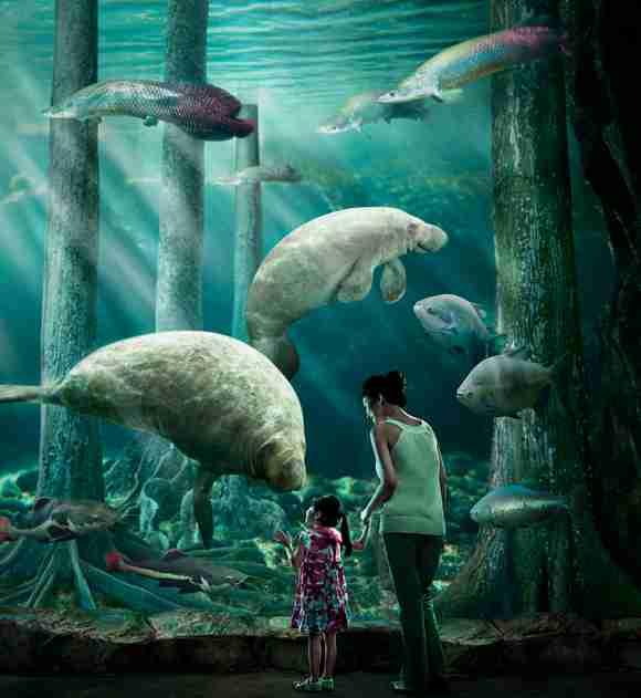 孩子们可以与可爱的动物们亲密接触