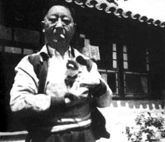 爱与仇:中国现代作家与猫 大作家小猫咪老照片小段子