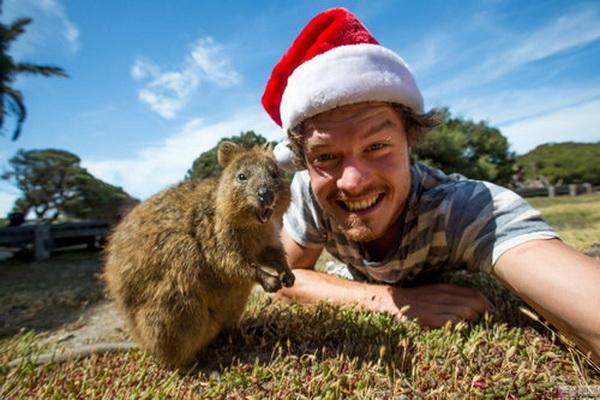 与动物微笑合影 爱尔兰小伙搞笑功底让人惊叹