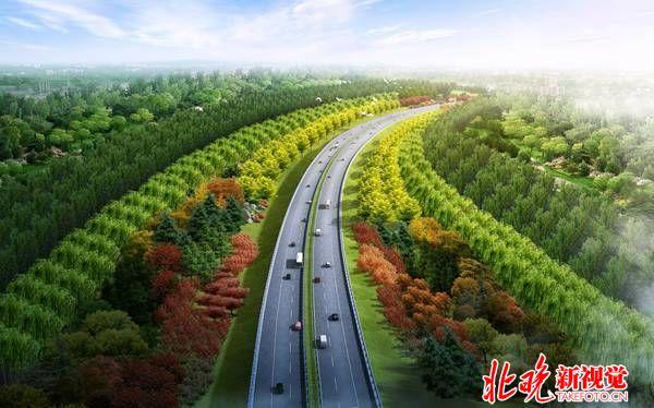 道路两旁绿化手绘