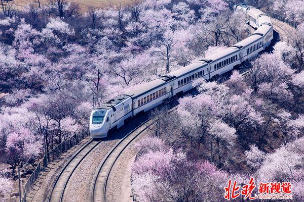 05山水北京-开往春天的列车+陈乾_副本