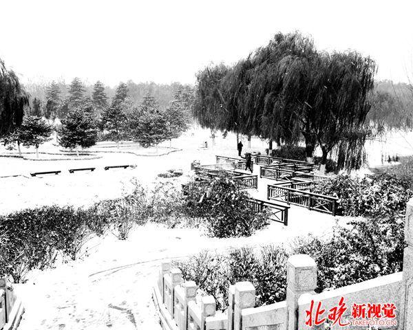03山水北京-水墨森林公园-大运河森林公园+陈燕平_副本