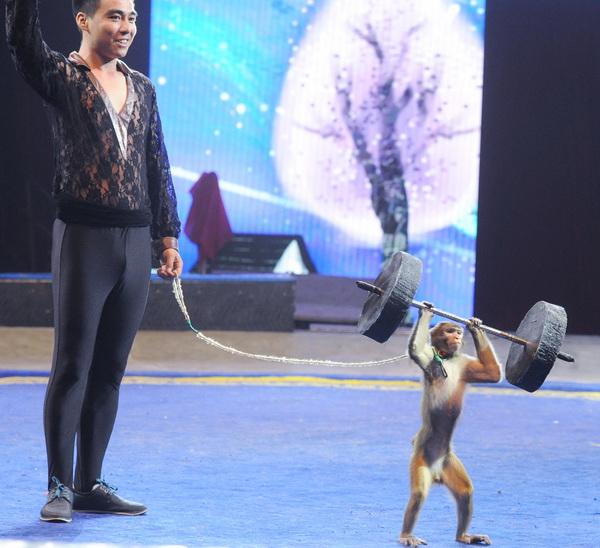 阎彤摄朝阳公园马戏团 (2)_调整大小