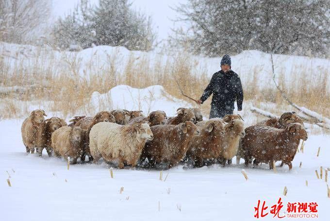 大范围降雪降温来袭 新疆连续三天发布寒潮蓝色预警