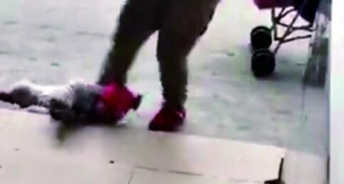 携程幼儿园老师殴打孩子喂芥末 涉事教师下跪认错