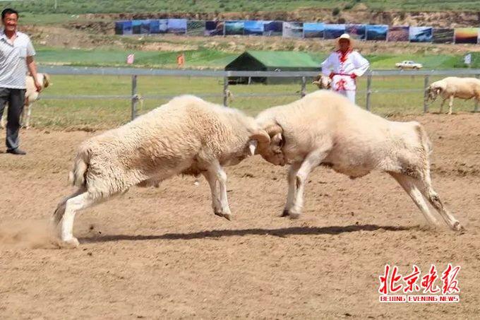 京津冀一家亲: 河北景区发福利欢迎北京游客
