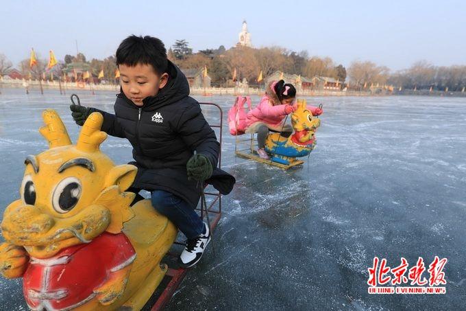 北京七日:海归美女后海当车夫 动物园国宝们咋过冬?