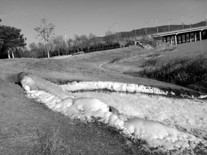 北京快乐八提前开奖:昌平新城滨河森林公园大冬天仍在蓄水_景观树木等被泡入水中
