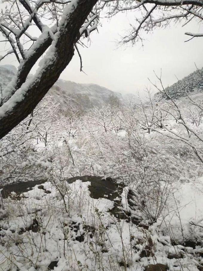 """大通彩票怎么注册:北京30年来首次四月雪_气温下降并非""""倒春寒"""""""