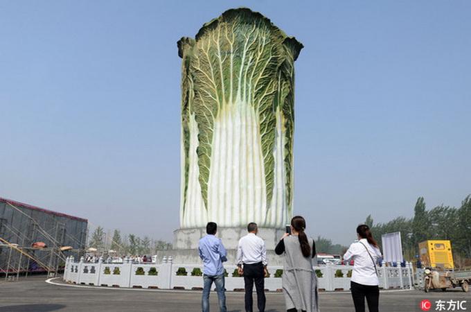 """郝群英 / 东方ic (原标题:20米高巨型""""大白菜""""雕塑亮相河北邯郸) 相关"""