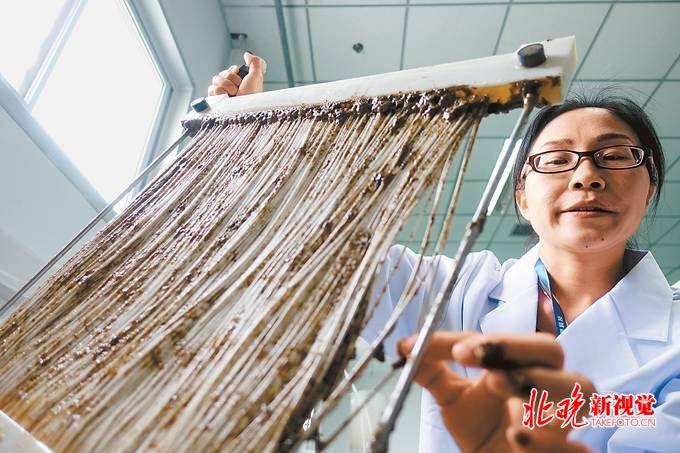 北京快乐8遗漏数据:全国劳模李天玉:用工匠精神_跟污水较劲