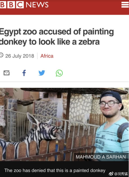 动物园画驴成斑马 网友:指驴为马?