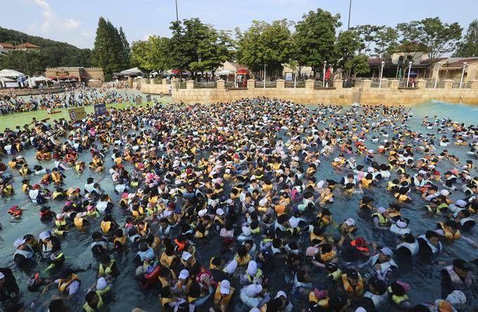 时时彩大师app下载:韩国百年不遇高温_最高温破40℃创纪录