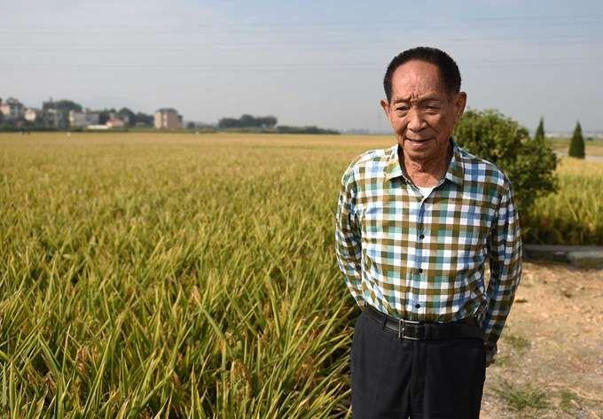 """玩北京赛车有什么技巧:""""杂交水稻之父""""的名头""""挡了别人的路""""?请别这么消费袁隆平!"""