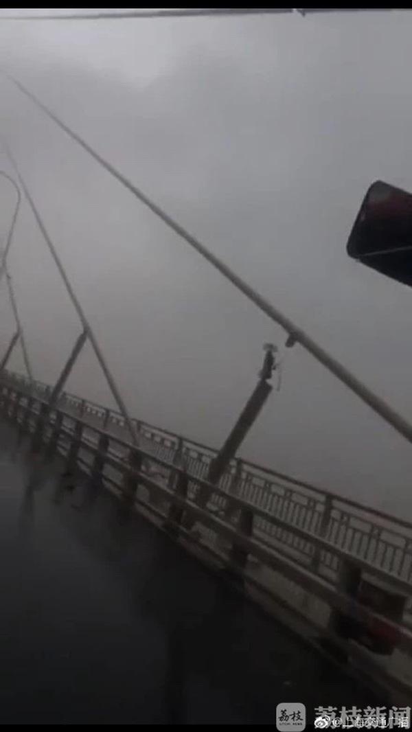 江苏辟谣拉索断裂 苏通大桥公司正在紧急抢修滑丝脱落的阻尼器(原创)