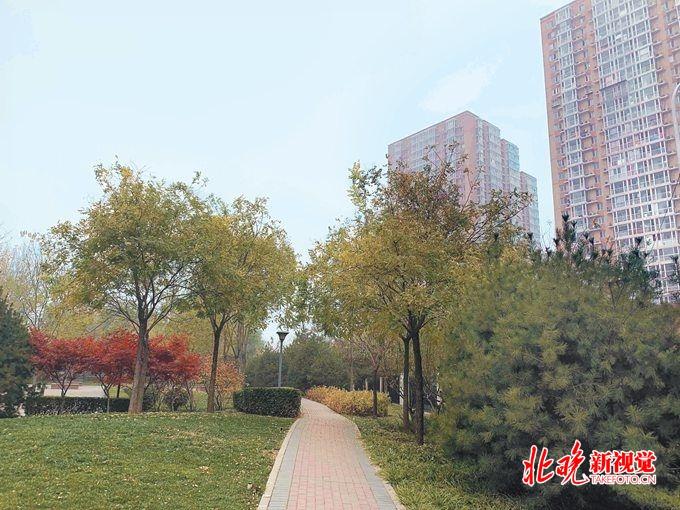 北京市政协委员岳鸿声: