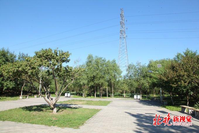 南苑森林湿地公园启动区为新机场高速以东,南苑路以西,通久路以南