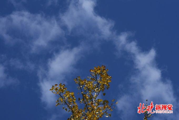 http://www.jienengcc.cn/shujuyanjiu/81413.html