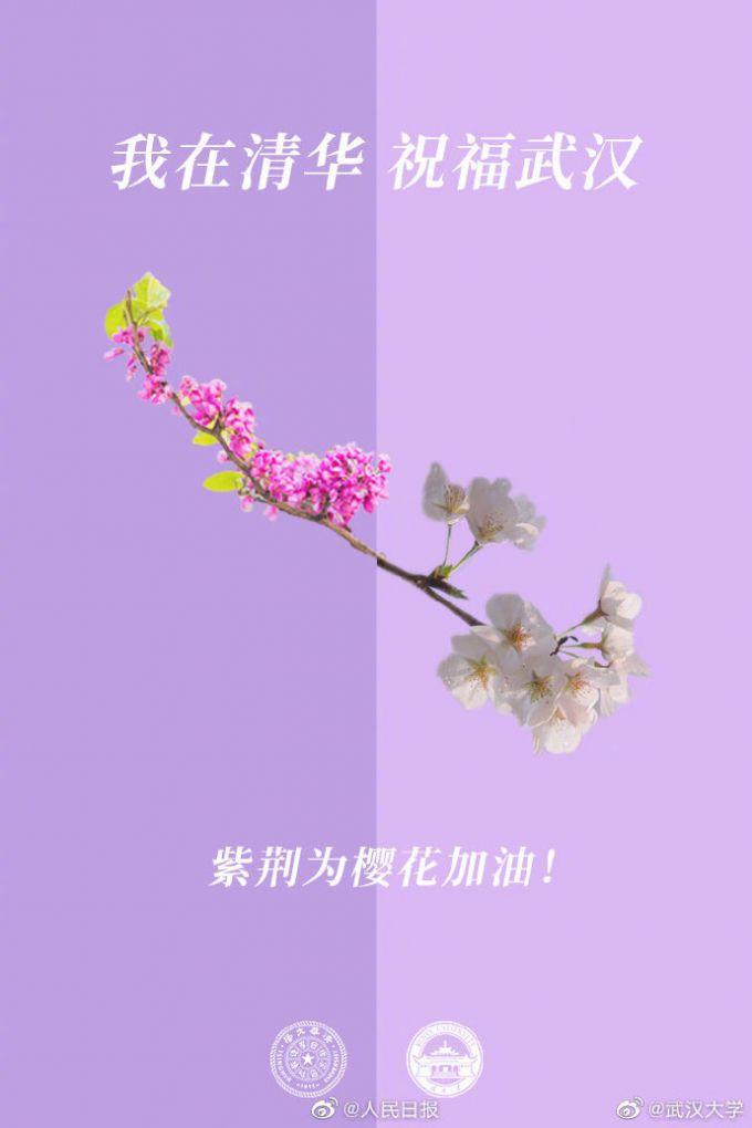 『推荐』美食给武汉热干面加油后,高校校花为武大樱花送祝福,春暖定会花开