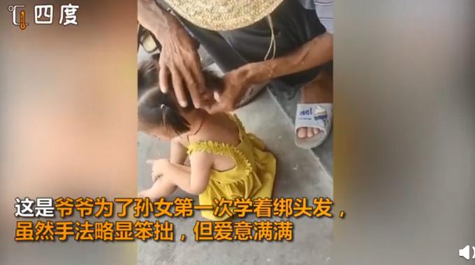 推荐 爷爷为孙女第一次尝试绑头发,网友:这可能是最仔细的活儿