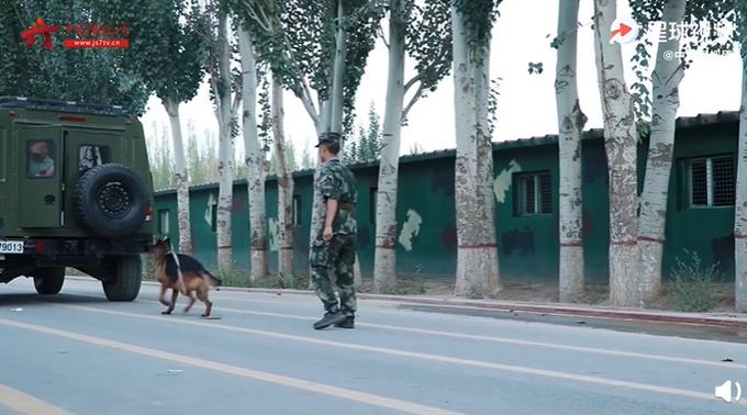  泪目!训导员退伍警犬扒着车不让走,网友都被他们感动:太好哭了