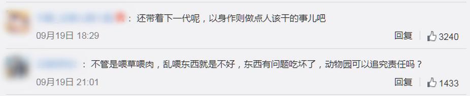  北京动物园游客扎堆喂狼吃草,园方回应:加强巡逻,志愿者专门劝导